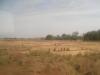 Plaine de Douma